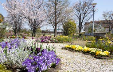 2019年3月名古屋の絶対おすすめイベント20選【 デートや子供向けのイベントも】