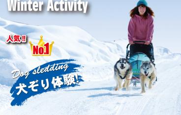 2019年3月札幌の絶対おすすめイベント20選【 デートや子供向けのイベントも】