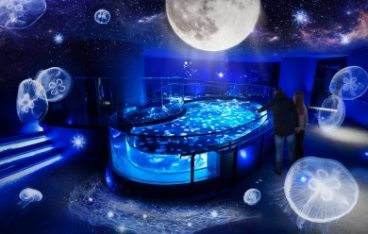 冬の夜空を舞台にクラゲと月が織りなす空間演出「月とクラゲ」