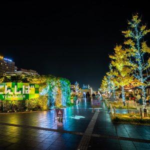 天王寺公園 イルミネーション 2020