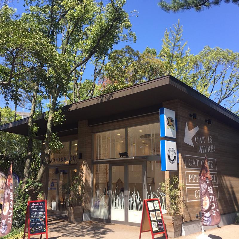 猫喫茶 空陸家 メイカーズピア名古屋店