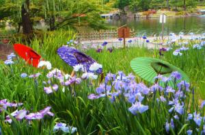 雨を聴く徳川園の和傘