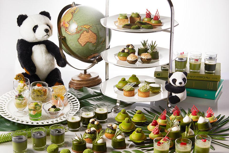 抹茶コレクション2021