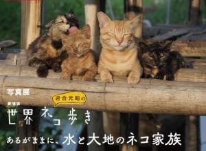 写真展 劇場版 岩合光昭の世界ネコ歩き あるがままに、水と大地のネコ家族