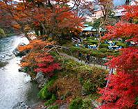 紅葉の御岳渓谷散策と新しい発見